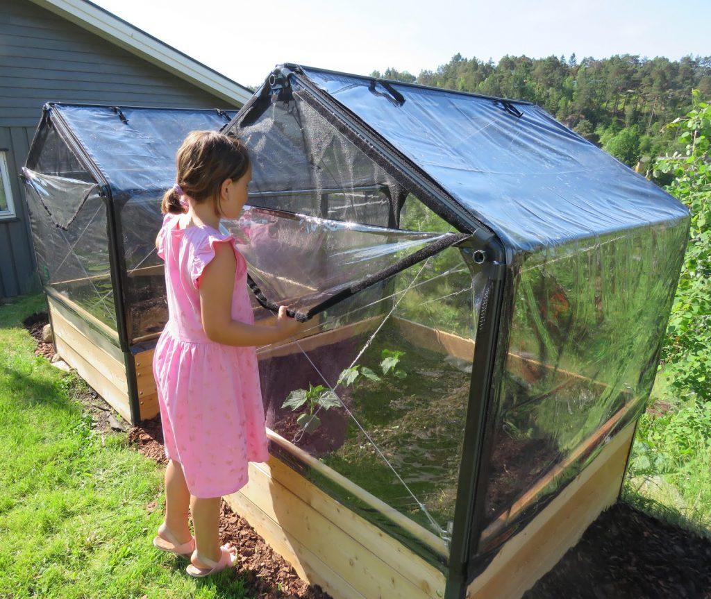 Growcamp - drivhus fra Danmark, ferdig montert og beplantet av grønnsaker