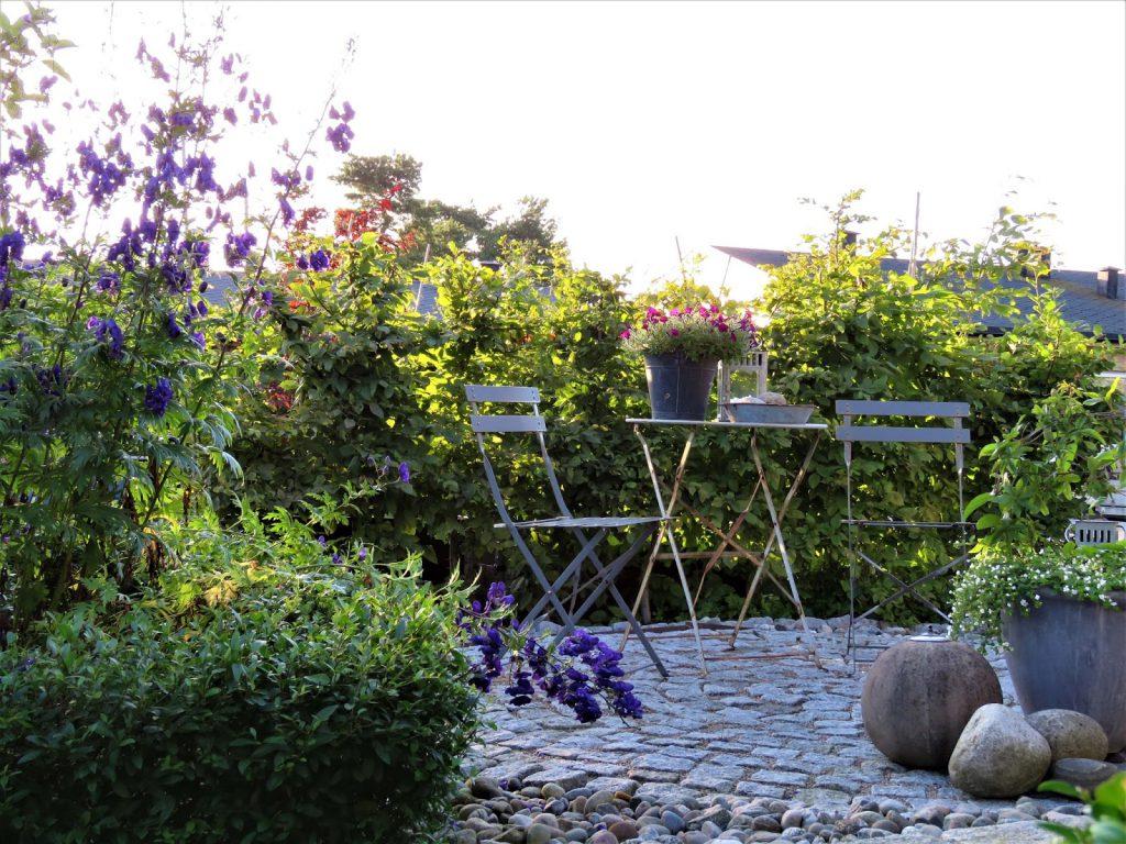 Fotot 4 fra Furulunden i anledning av 1000 åpne hager