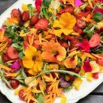 Tips til spiselige blomster. Foto: Tonje Bergh. Plantmaia