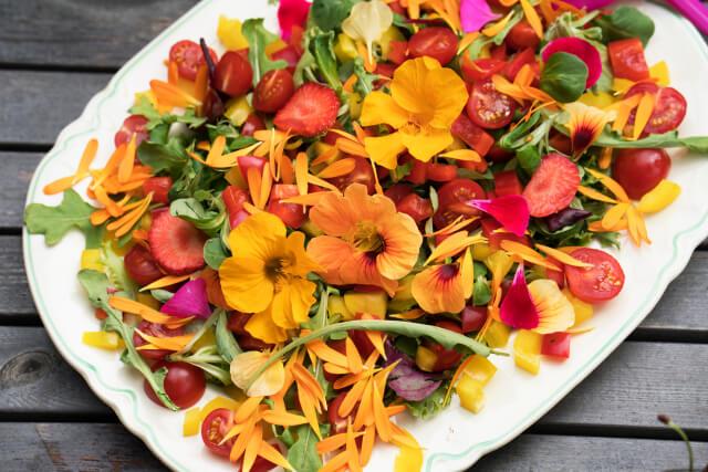 Foto 1: Spiselige blomster av Tonje bergh.Plantmania. Furulunden