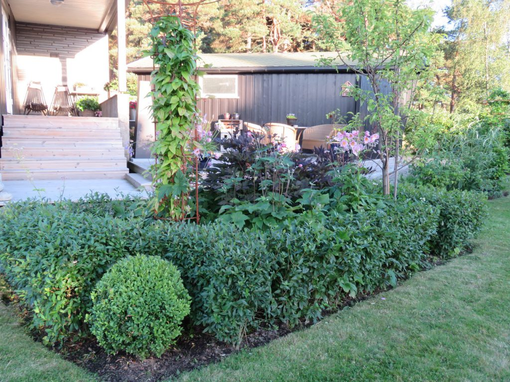 Tips til hagedesign. Det andre rektangulære bedet i Furulunden.