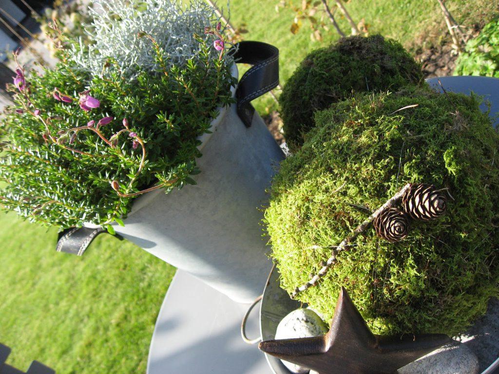 Inspirasjon til høstkrukker - del 1 Mosekuler og annet høstfint i Furulunden