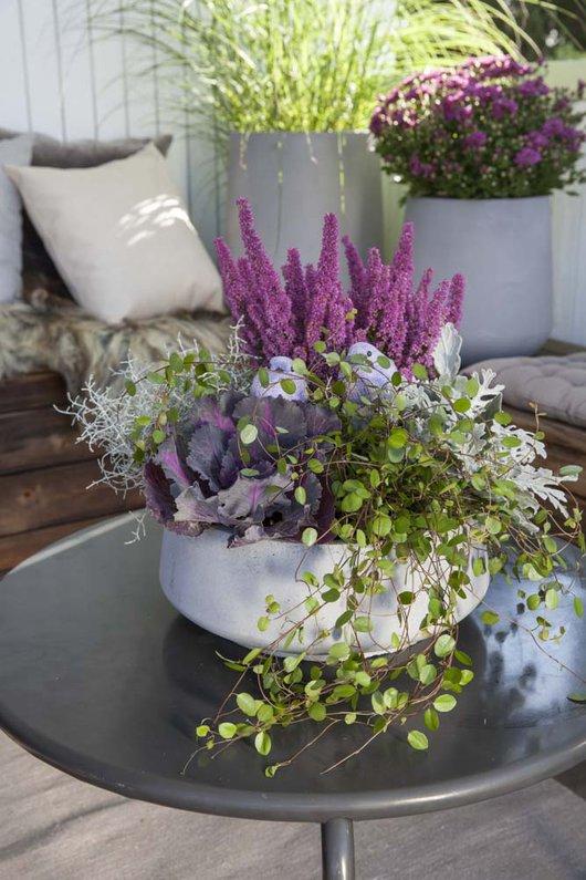 Inspirasjon til høstplanter i krukker - del 4 Furulunden. Lekker samplanting på et bord i en sittegruppe.