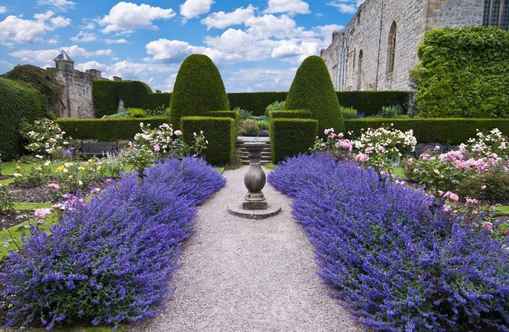 Lavendel og krydderurter - vinn bøker! Lavendel som kantplante