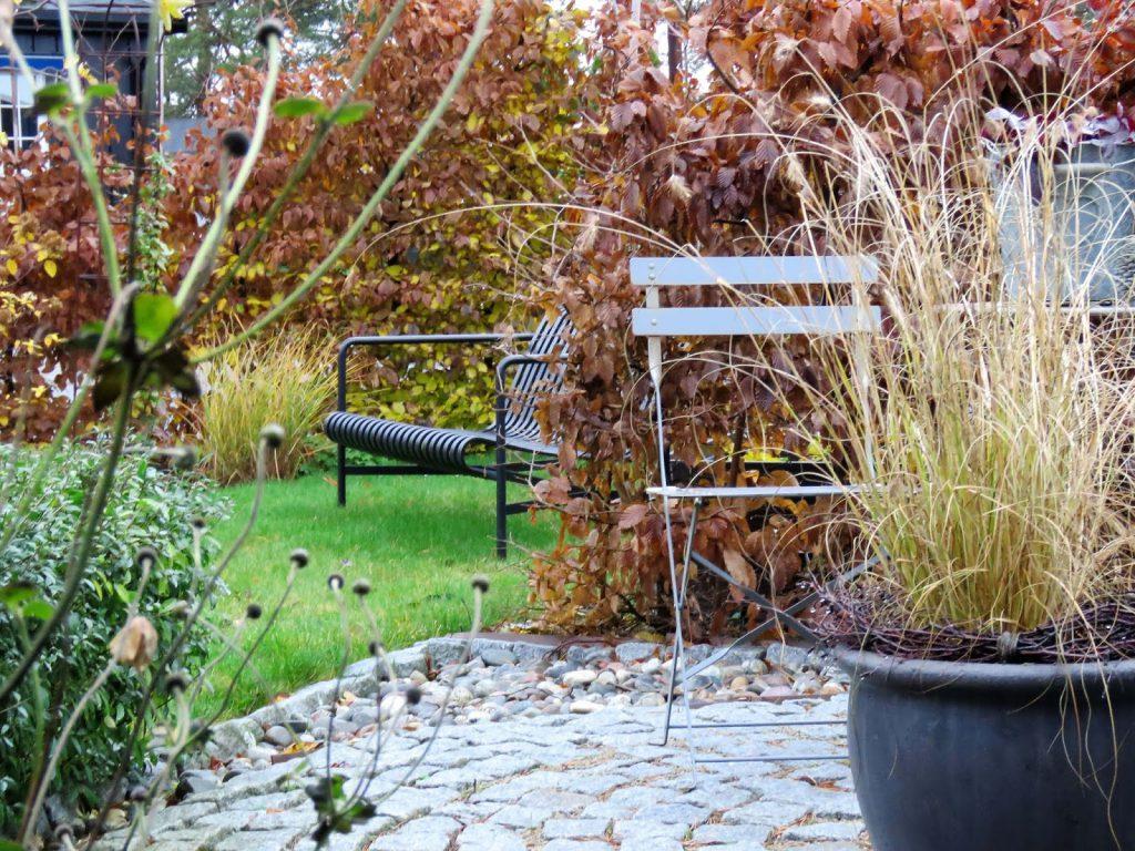 Høstfarger i vinterhagen, det går mot vår. Nærbilde av sirkelen i høststemning. Furulunden IMG_0041