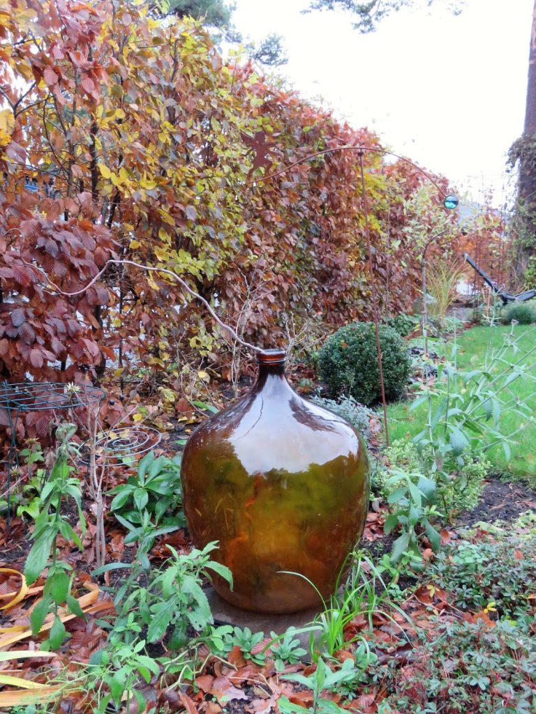 Høstfarger i vinterhagen, det går mot vår.  Vinballong matcher rustenfarget hekk. Furulunden IMG_0016