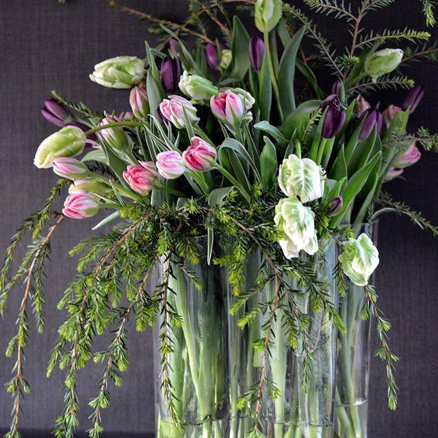 Vi feirer tulipanens dag - Tulipaner og litt grønt