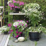 Med sommerblomster i farger som passer sammen