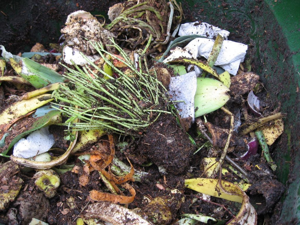 Matavfall i kompostbingen