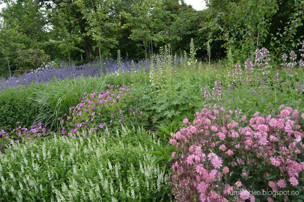 Historikk og oppskrift på en cottage garden. Et velkomponert blomsterbed