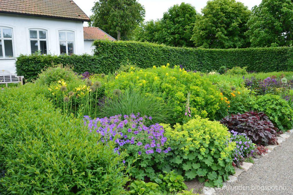 Historikk og oppskrift på en cottage garden - Tette blomstrende bed