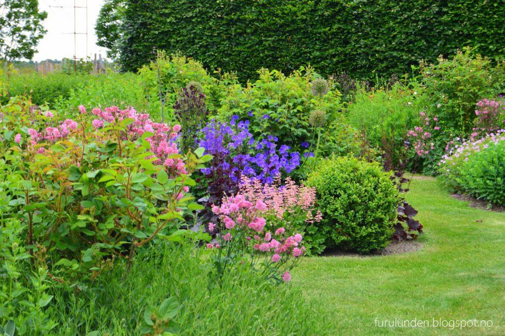 Historikk og oppskrift på en cottage garden. Blomsterflor, tett i tett.