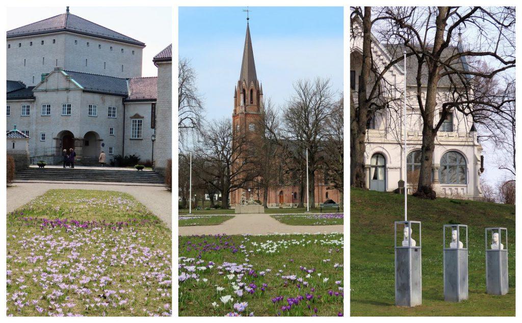 Krokus - de sikreste vårtegn og  Fredrikstads fargepalett - Utenfor Biblioteket, kirken og kommunehuset-min