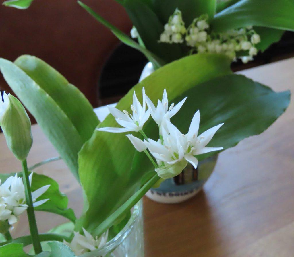 Ramsløksblomsten er annerledes en Liljekonvallens blomst