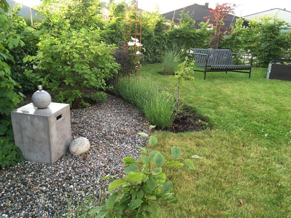 Tips til hvordan et hageprosjekt starter - Her tar jeg det ferdige prosjektet, rundt furua, i nærmere øyesyn