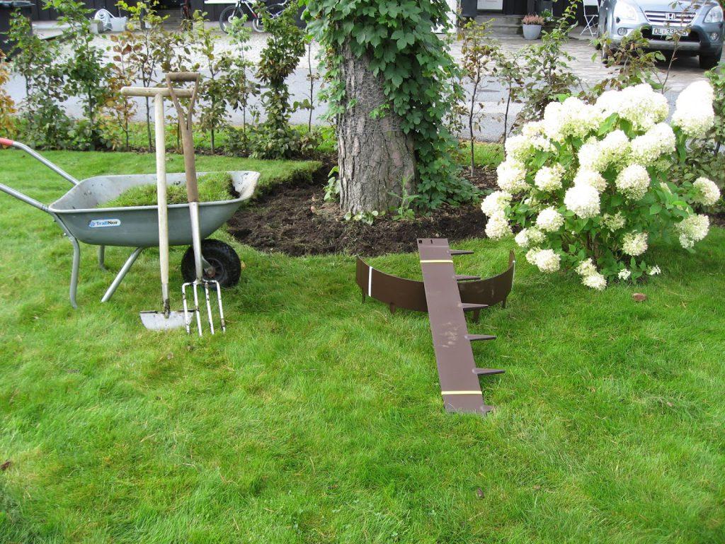 Tips til hvordan et hageprosjekt starter - De første spadetakene er i gang i prosjektet, rundt furua