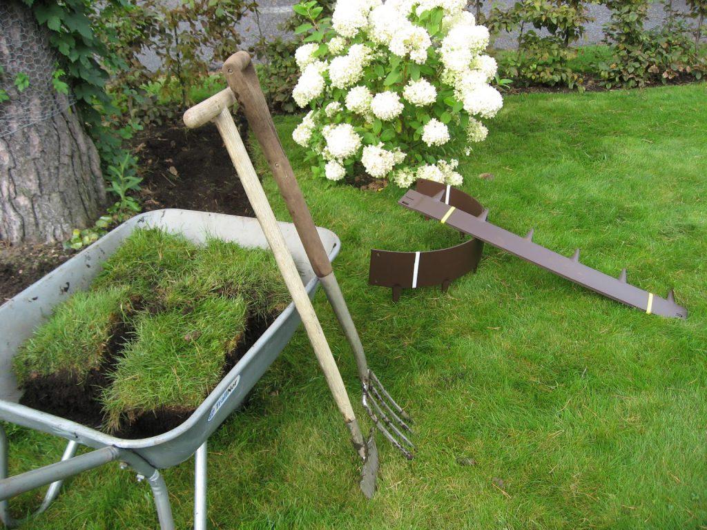 Tips til hvordan et hageprosjekt starter - Gode redskaper gjør susen i et prosjekt som rundt furua.