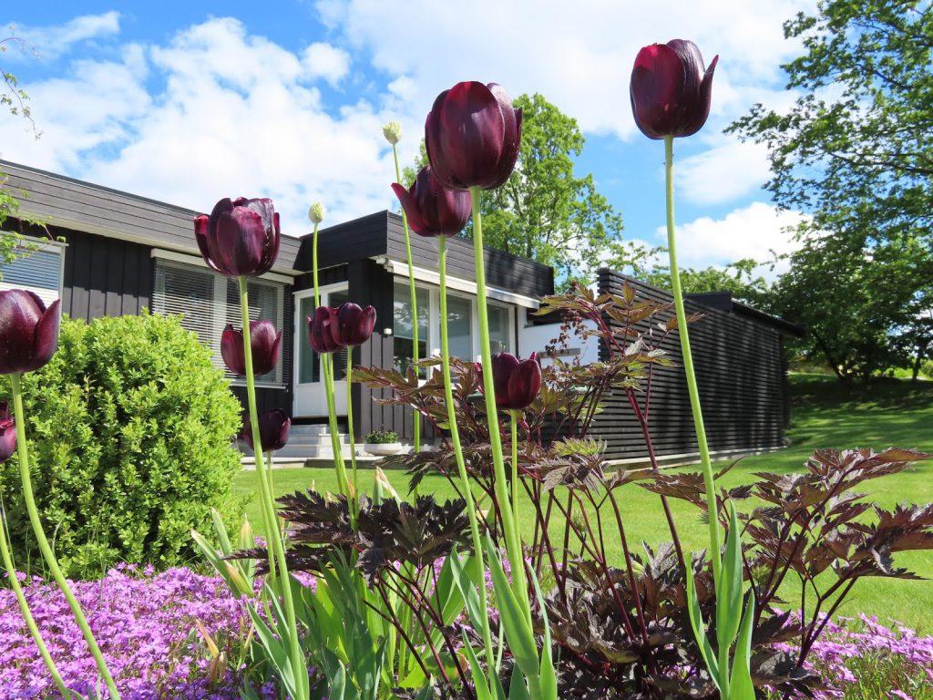 Slik ønskes vi velkommen med stilrene blomsterbed IMG_1557