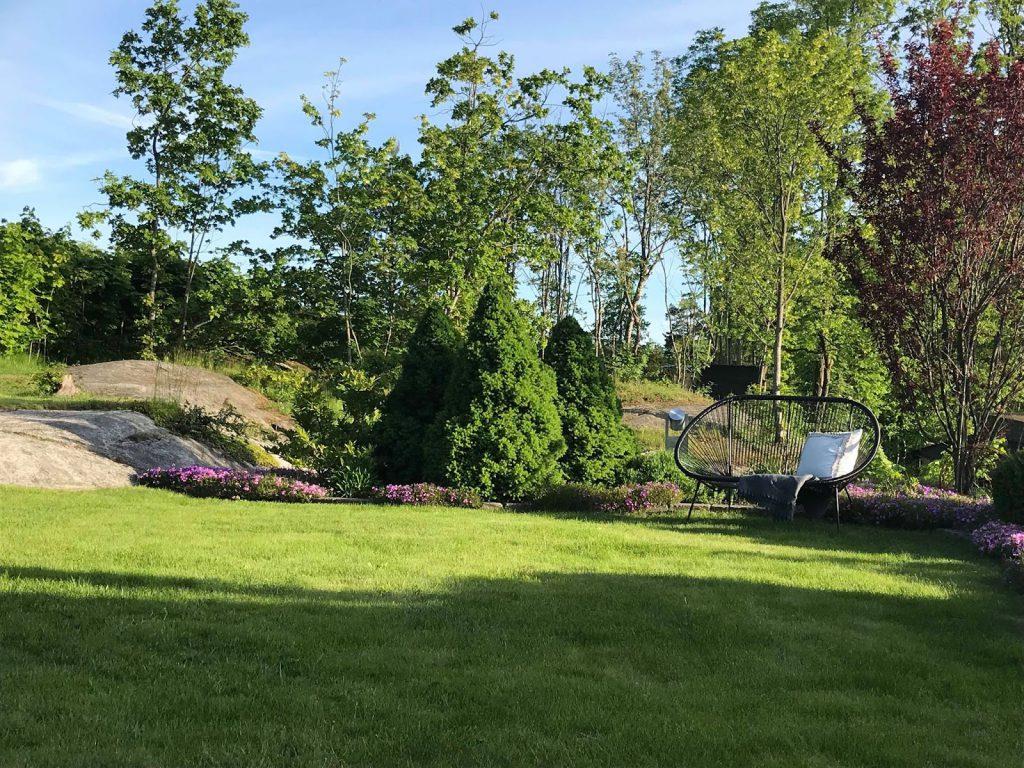 Stilrene uterom med flotte solplasser - en benk i ytterkant av hagen-min