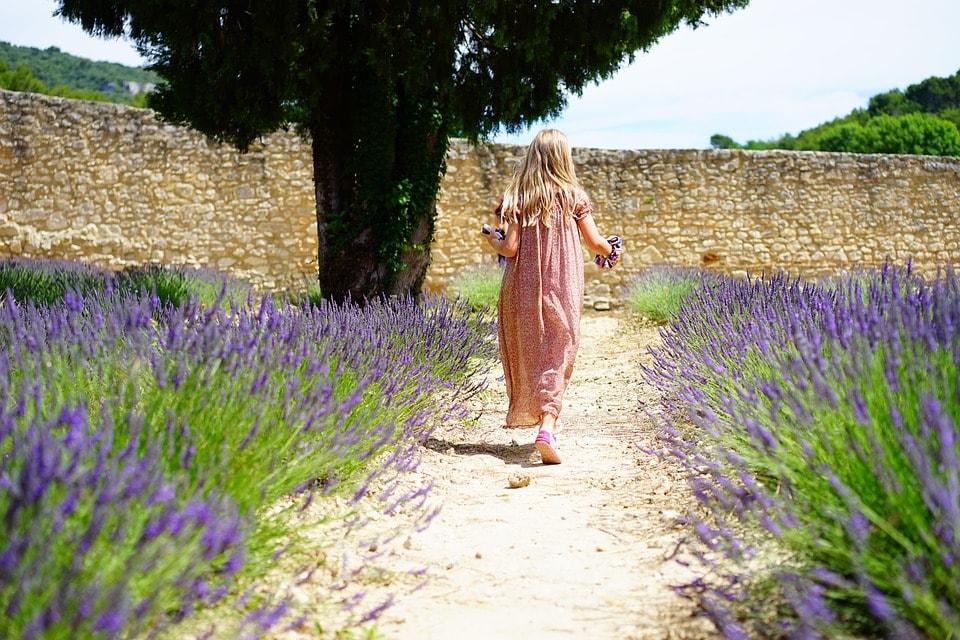 Ei jente rusler rundt blant lavendel. Foto: Pixabay.