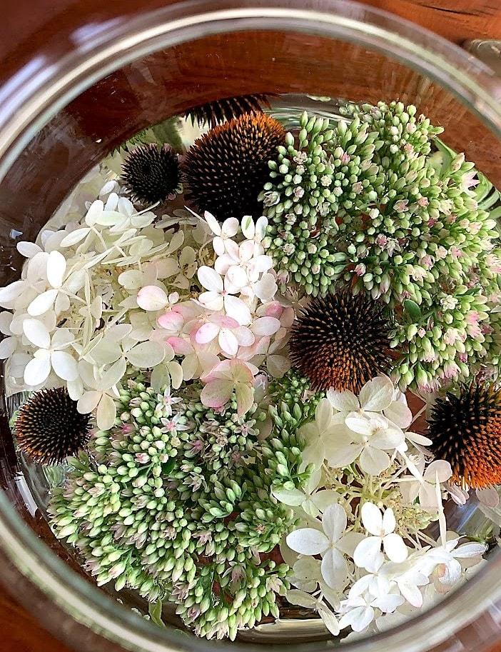 Fyll vasen med sensommerens blomster Blomster i Finn Schjølls Boblen IMG_2830 (2)-min