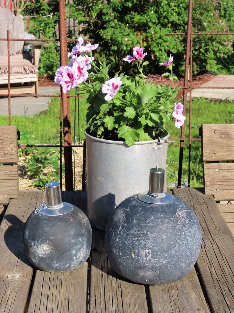 Lev landlig og fruktbart i en hage i Vaterland ved Gamlebyen - stilleben på bordet IMG_1856 (2)-min