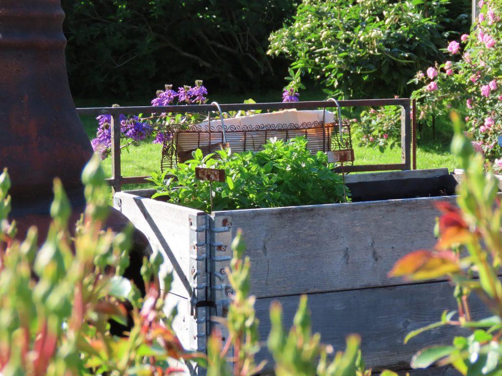 Pallekarmer i hagen - lev landlig IMG_1871 (2)-min (1)