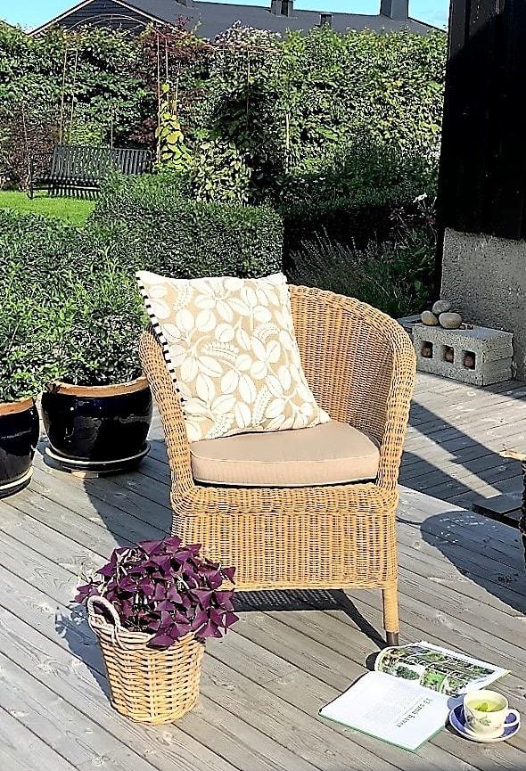 Appelsinmynte-te i godstolen - Nyter solen en morgen i september IMG_3254 (4)-min