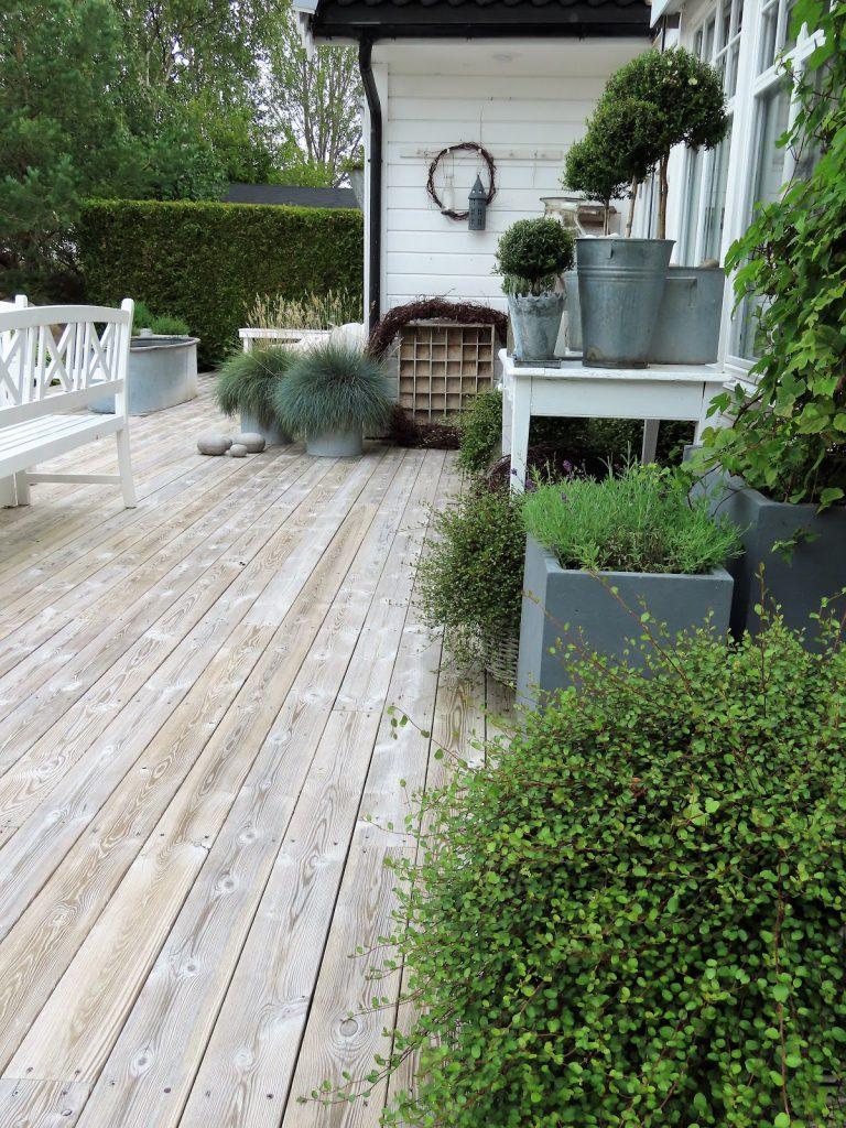 Å ha terrasse som hage - grønt og sink på rekke og rad IMG_3432 (2)