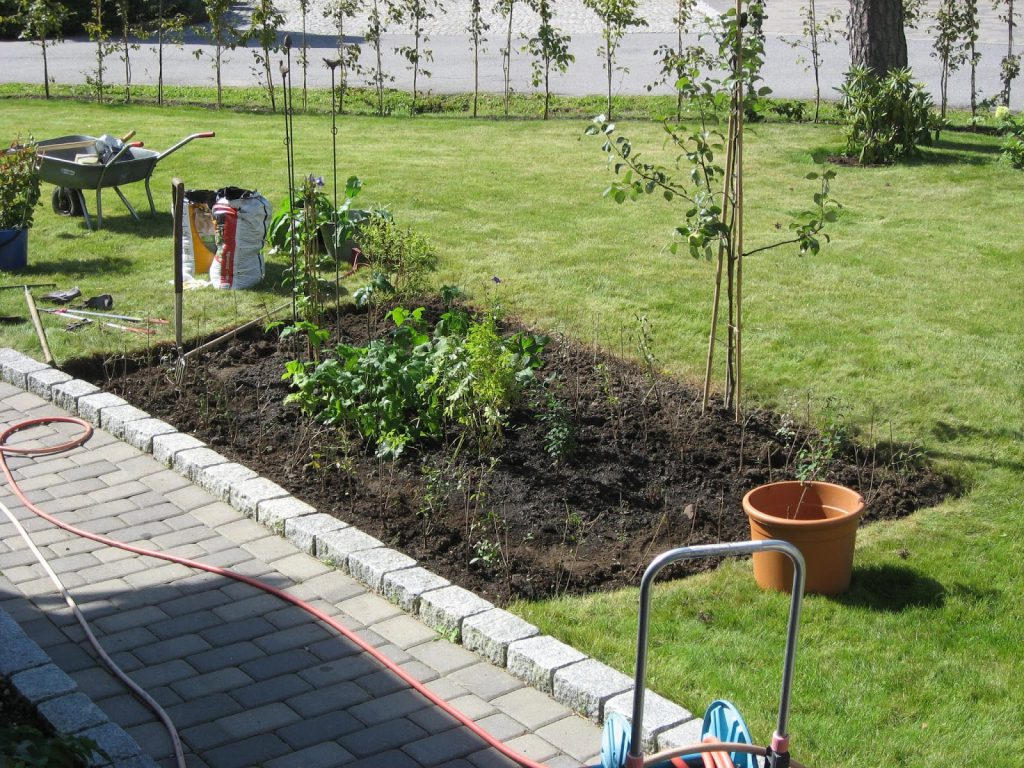 Rektangulært bed nr. 1 - Hekken rundt bedet o.a. er plantet