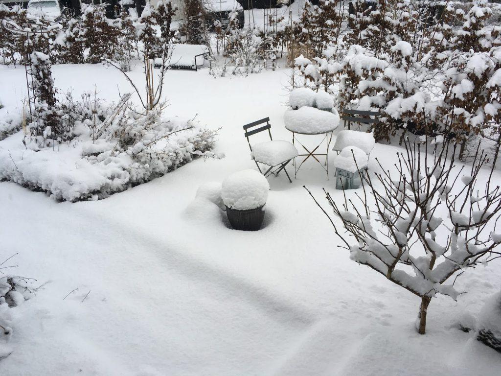 Bedet dekket av hvit snø