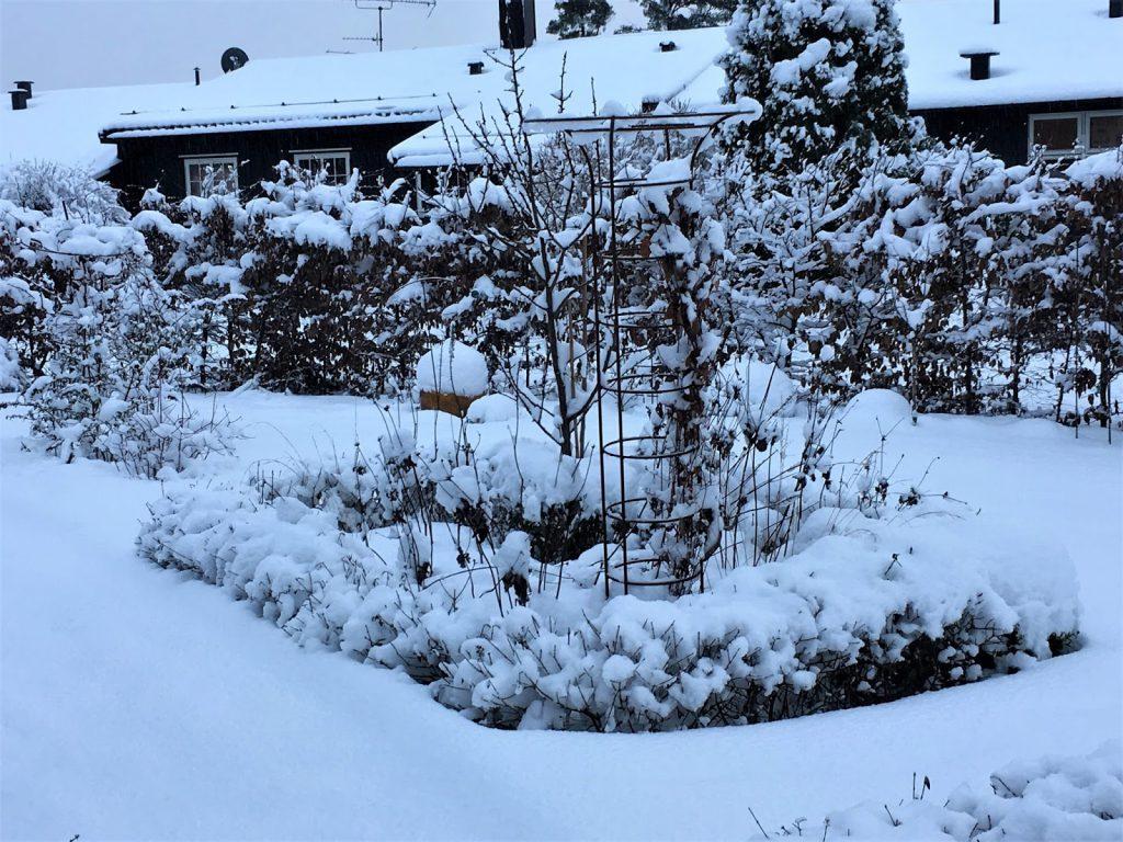 Rektangulært bed gjennom fire årstider - Rektangulært bed med masse snø.