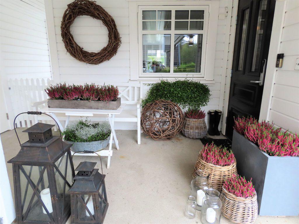Jeanette klarer seg utmerket med å ha terrasse som hage - elemeter fra inngangspartietIMG_3347 (2)