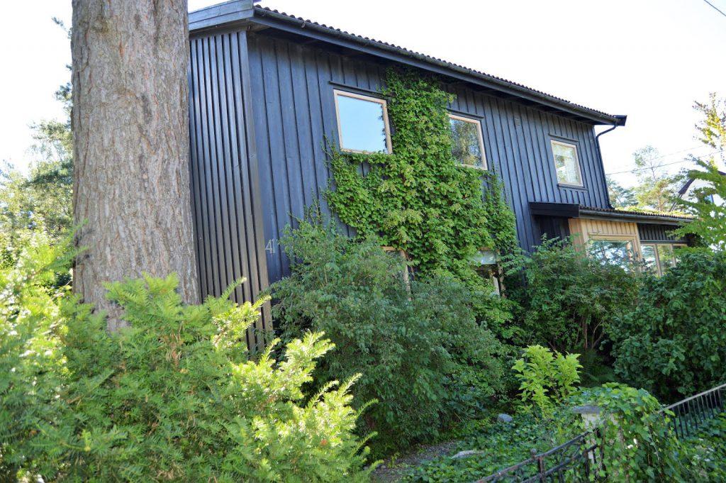 Se en hage i harmoni med seg selv - Boligen til Kari og Kolbjørn. Furulunden.