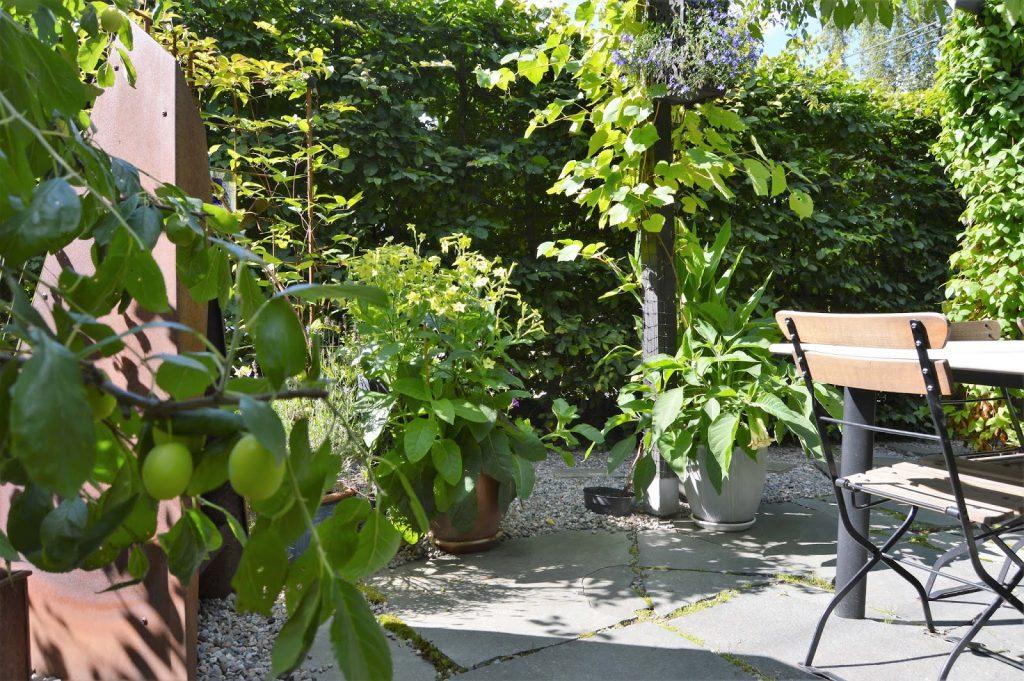 Se en hage i harmoni med seg selv - Rundt spiseplassen. Furulunden.
