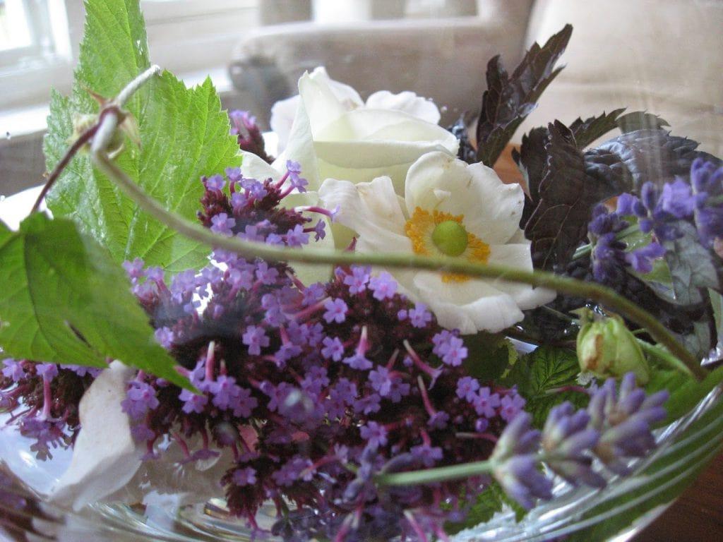 Vil du vite mer om Høstanemone - bukett i vase