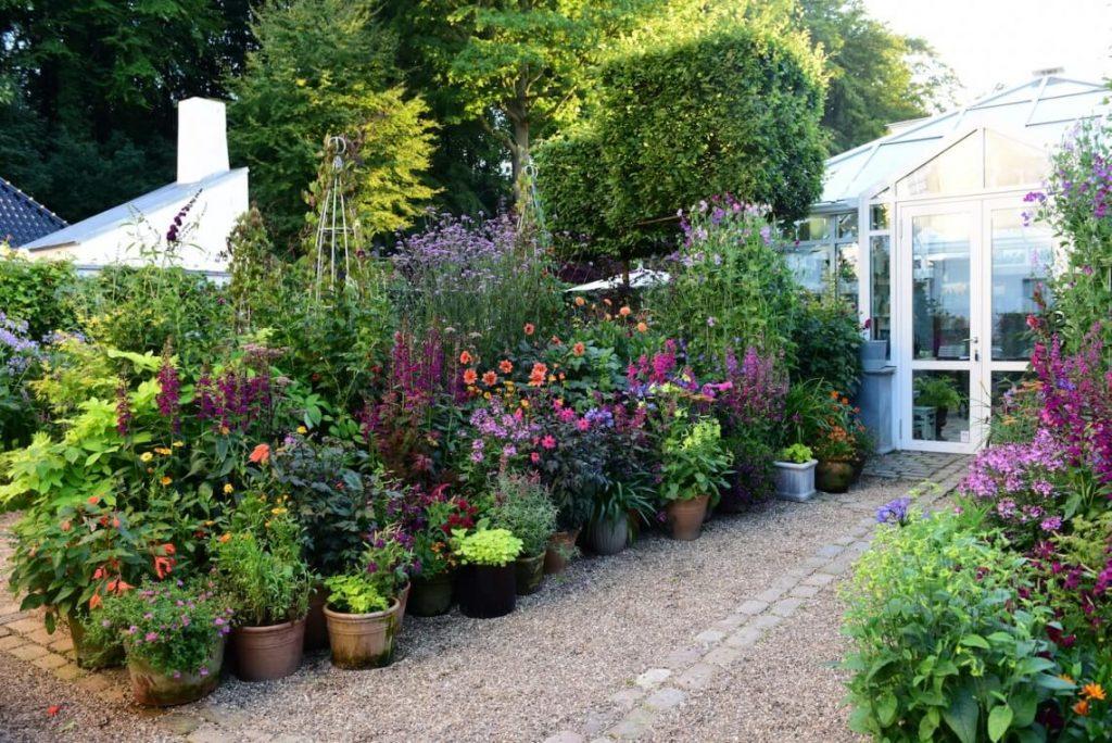Å plante i krukker får fin effekt - Her fra Claus Dalbys hage