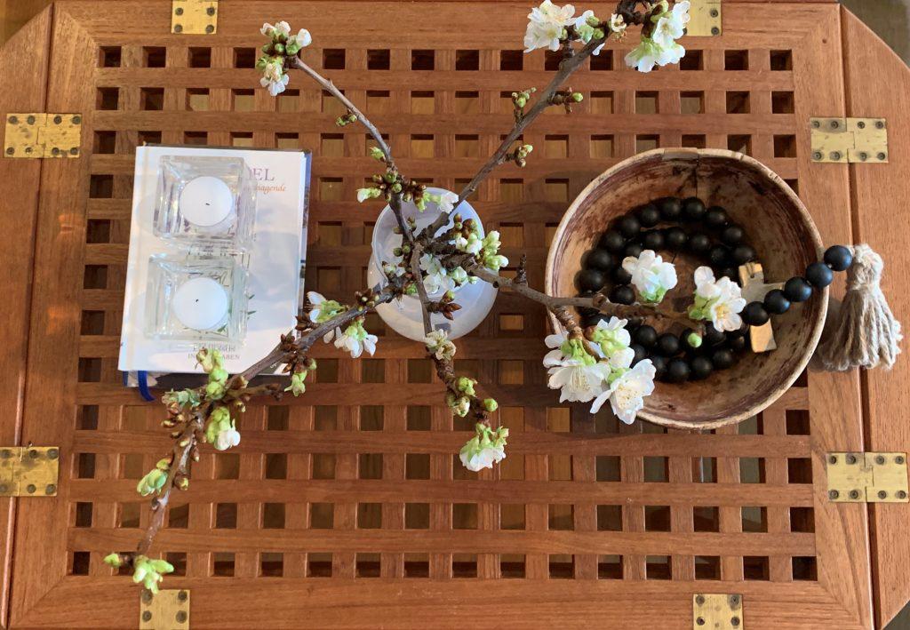 Morellkvister i blomst pynter opp i interiøret