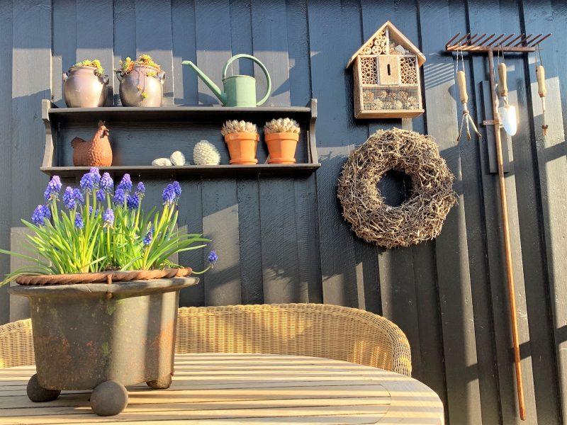 Planter er satt ut på terrassen og gleder seg over solglimt