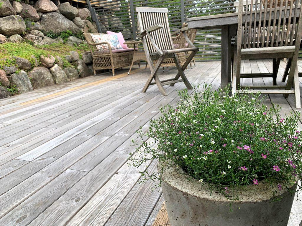 Sommerblomstene er på plass på hytteterrassen