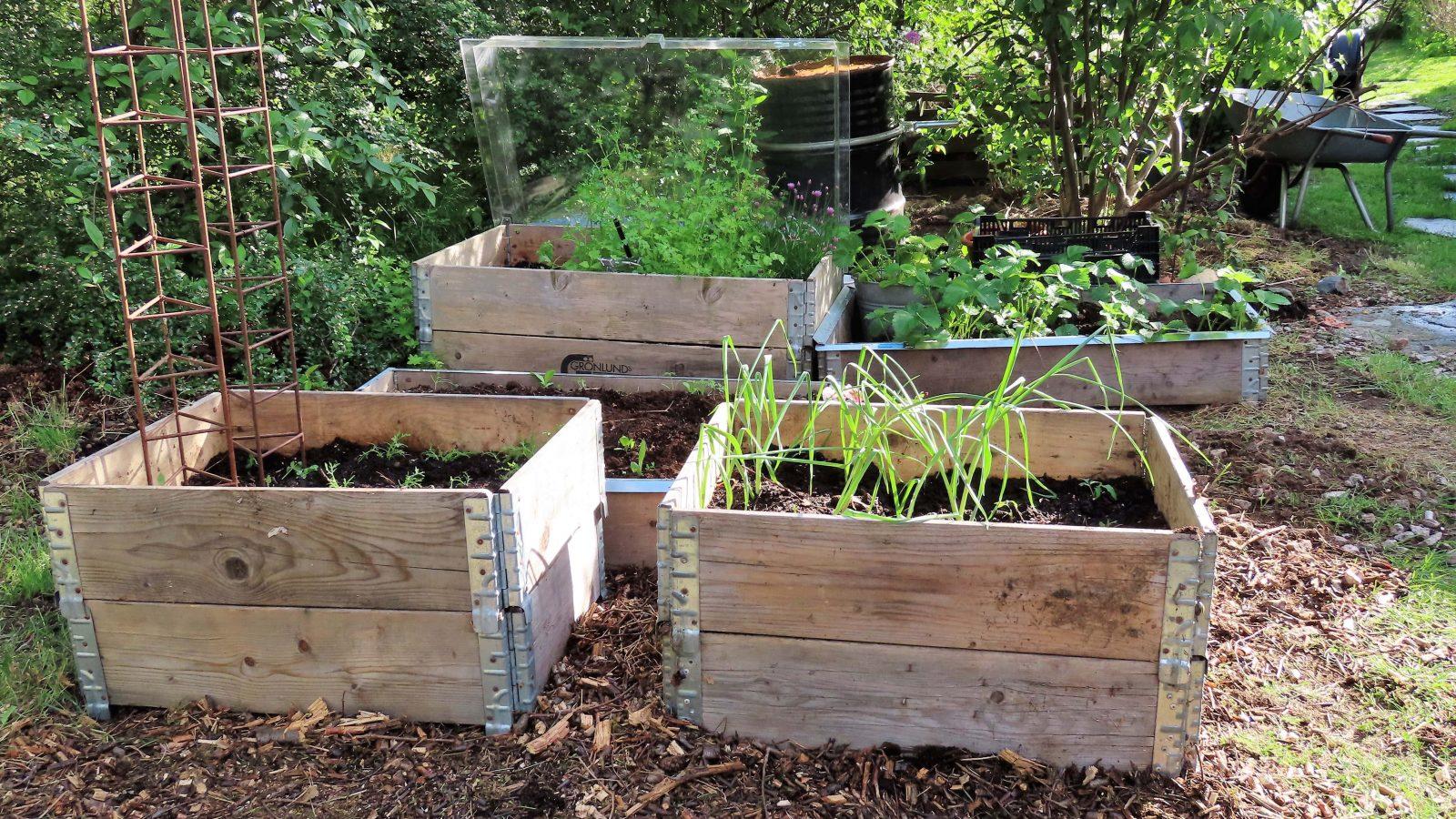 Her er pallekarmene fylt og beplantet