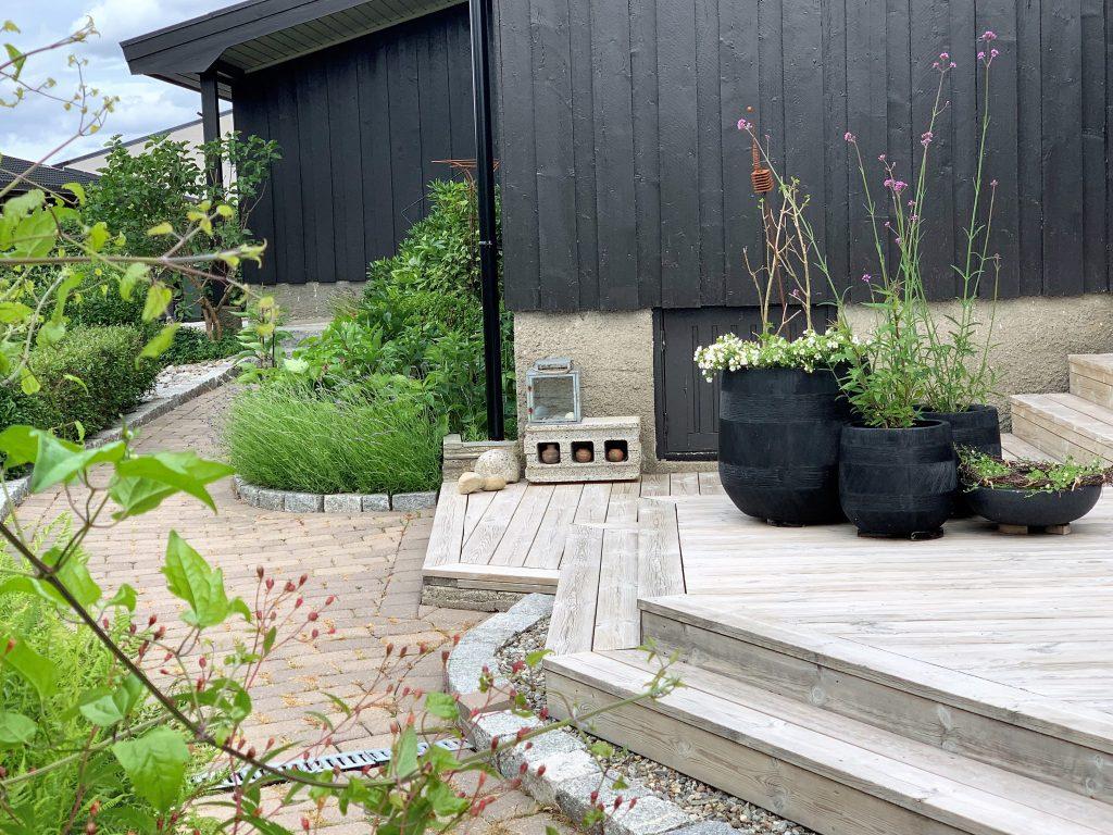 Hage - tips til design og struktur - terrassetrapp og beplantning