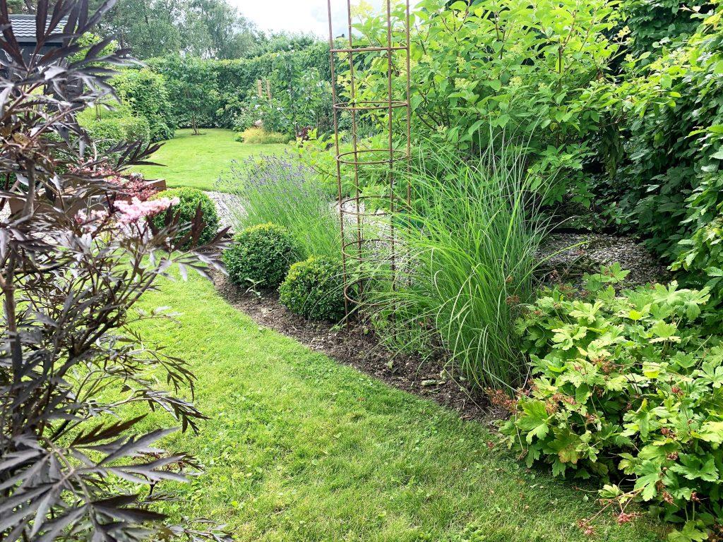 Hagen rundt furua er en del av hagens design