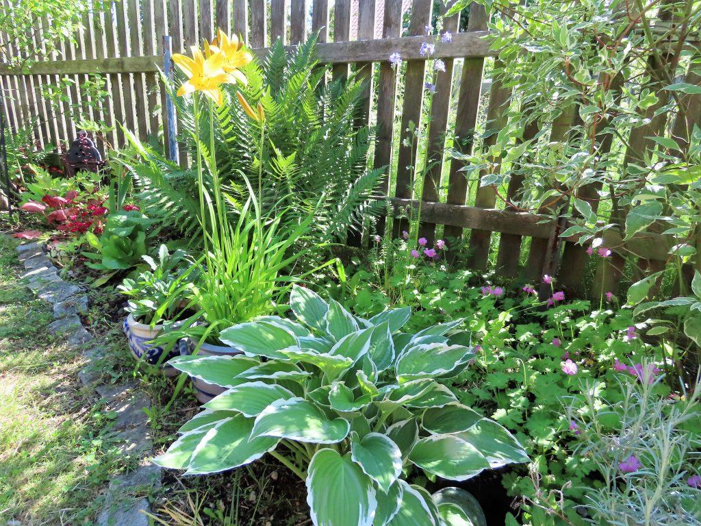 Når hagen preges av ditt kunstnersinn - Vaterland - staudebed