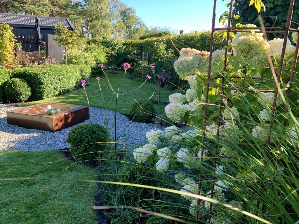 Ned med Lavendel opp med Kjempeverbena - er du klar. Sett mot vannbordet - fontenen