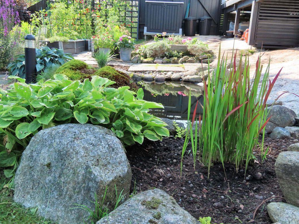 På hagevandring hos Wenche - Rundt dammen med bed og store steiner