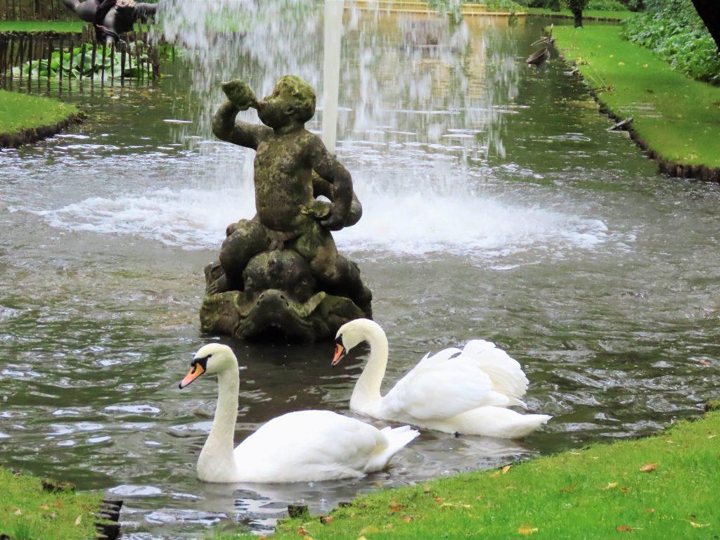 Svaner og statue i Havlystparken
