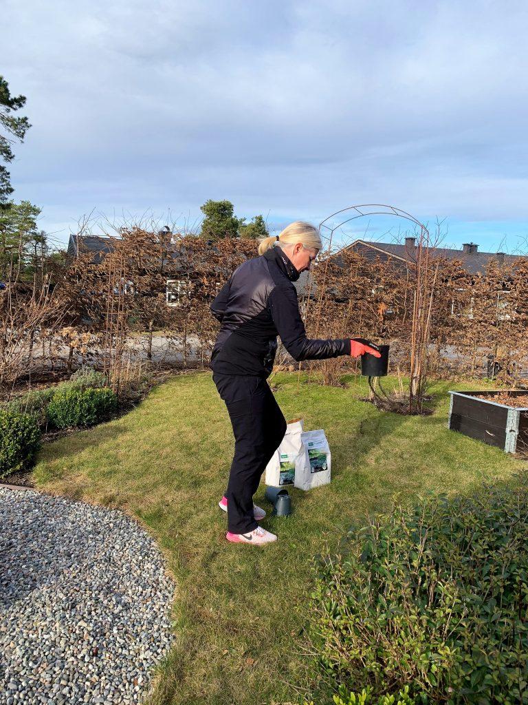 Elin Hjortland sprer tangprodukter som jordforbedring i hagen min