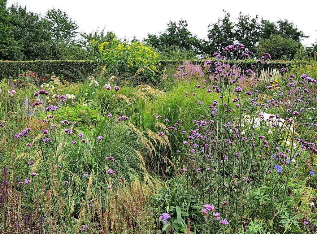 Inspirasjonsbok - Design med græsser av Nina Ewald - en eventyrlig hage med prydgress