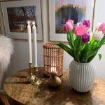 Vi feirer tulipanens dag - de første tulipanene i stuen på nyåret